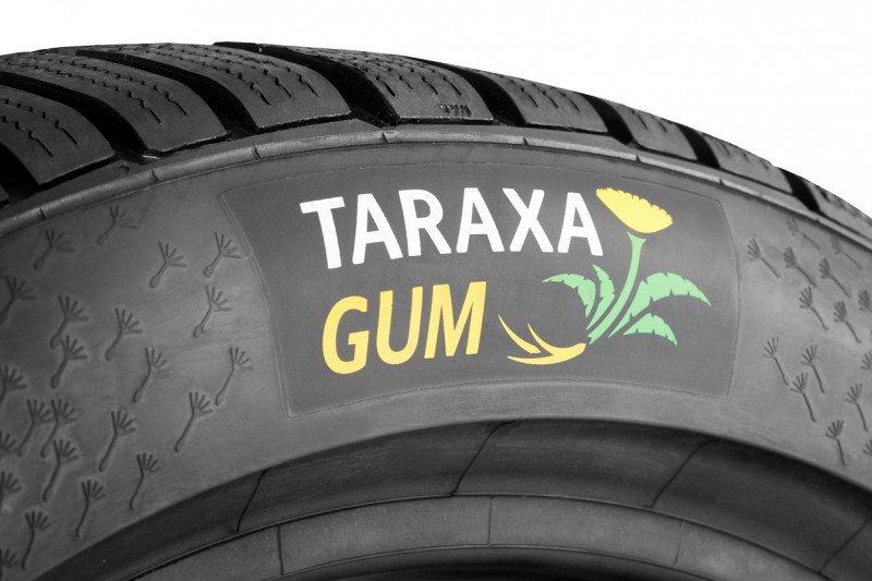 opona Taraxa Gum